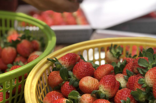 a basket of red strawberry